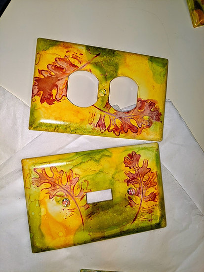 Switch and Outlet Plate Pair