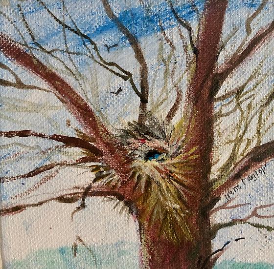 Tree with Nest