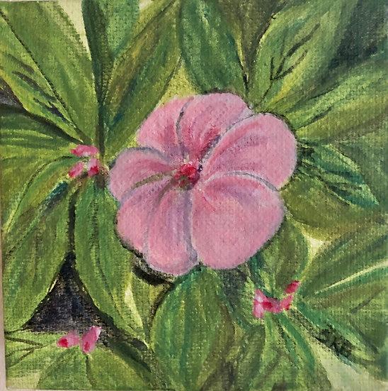 Single Flower 22