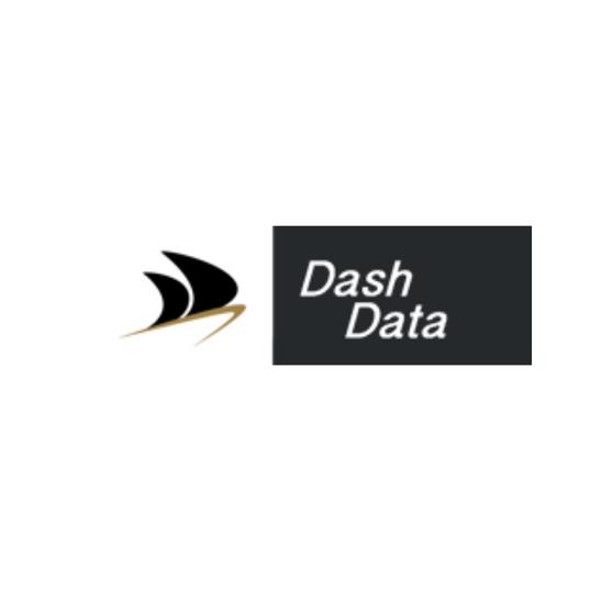 Dash Data Logo .png