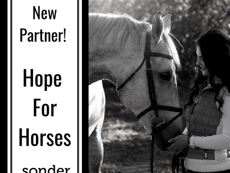 New partner - Hope For Horses