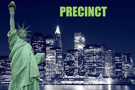 Precinct copy.jpg