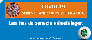 covid 19 henvisningsramme 190620.PNG