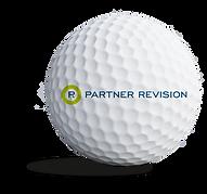 partnerrevision_sponsorbold.png