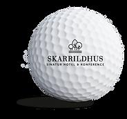 skarrildhus_sponsorbold.png