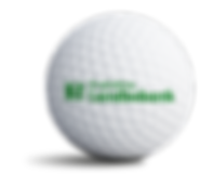 ringkoebinglandbobank_sponsorbold.png