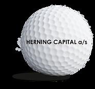 herningcapital_sponsorbold.png