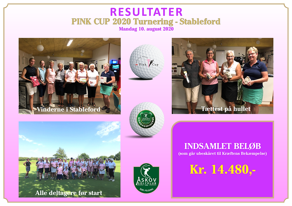 resultater pink cup 2020.PNG
