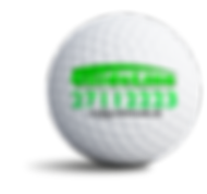 guideline_sponsorbold.png