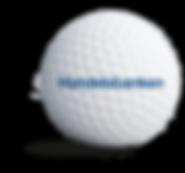 handelsbanken_sponsorbold.png