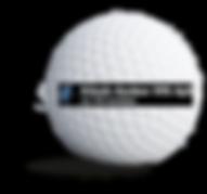 aaskov_vvs_sponsorbold.png
