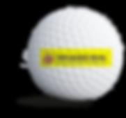 tandlaegerneobling_sponsorbold.png