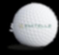 emtellie_sponsorbold.png
