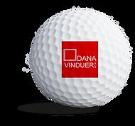 dana_sponsorbold.png