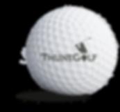 thunegolf_sponsorbold.png