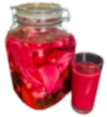 Fermented different vegtables. The result is a spicy V8 like drink, with probiotic gout bacteria and beneficial enzymes.
