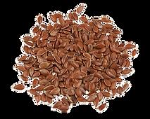 Raw Whole Flax Seeds