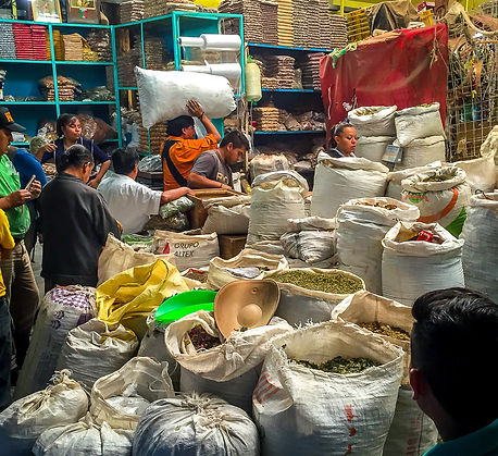 Medicinal Herb market in Mexico City. one of the largest herbal markets in the world. Here we buy all the gout herbs we use in the gout clinic for lowering uric acid levels