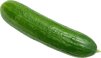 A fresh green Cucumber before peeling.