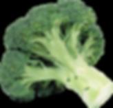 broccoli gout diet