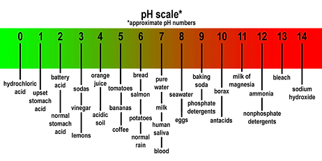 pH Scale with different Foods, Fruits and chemicals