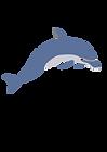 723px-Dolphin_enrique_meza_c_02.svg.png