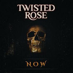 twisted%20rose_edited.jpg