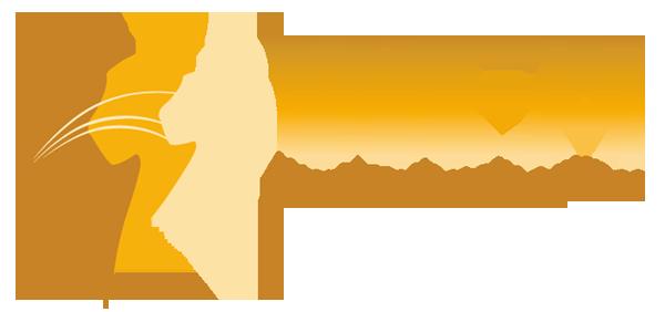 WFA_logo_600_280.png