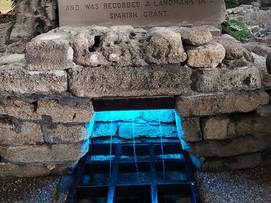 Buscando la Fuente de la Eterna Juventud de Ponce de León en Florida