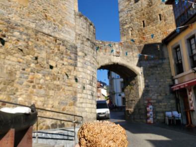 El Camino Primitivo de Santiago en Asturias sabe a...