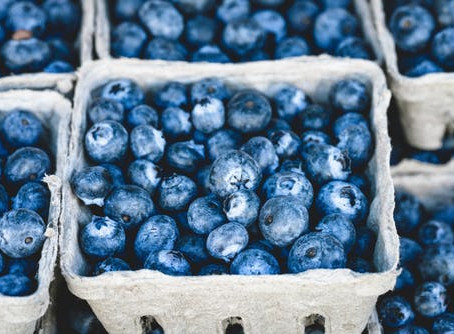Blueberry Heaven!
