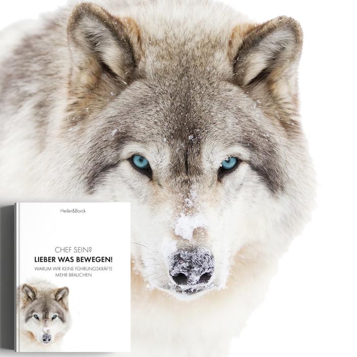 Der Artikel heißt: New Work unzensiert und ungeschminkt: Unser Buch ist auf dem Markt!  Das Bild zeigt unser Buch und einen Wolf.