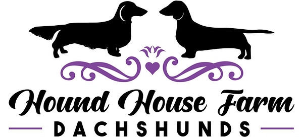 Dachshund logo.jpg