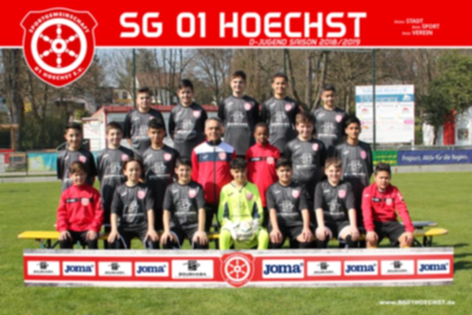 D-Jugend- SG 01 Hoechst