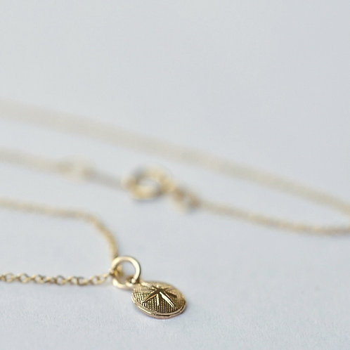 Ketting verguld WINDROOS