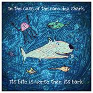 Dog Shark.JPG