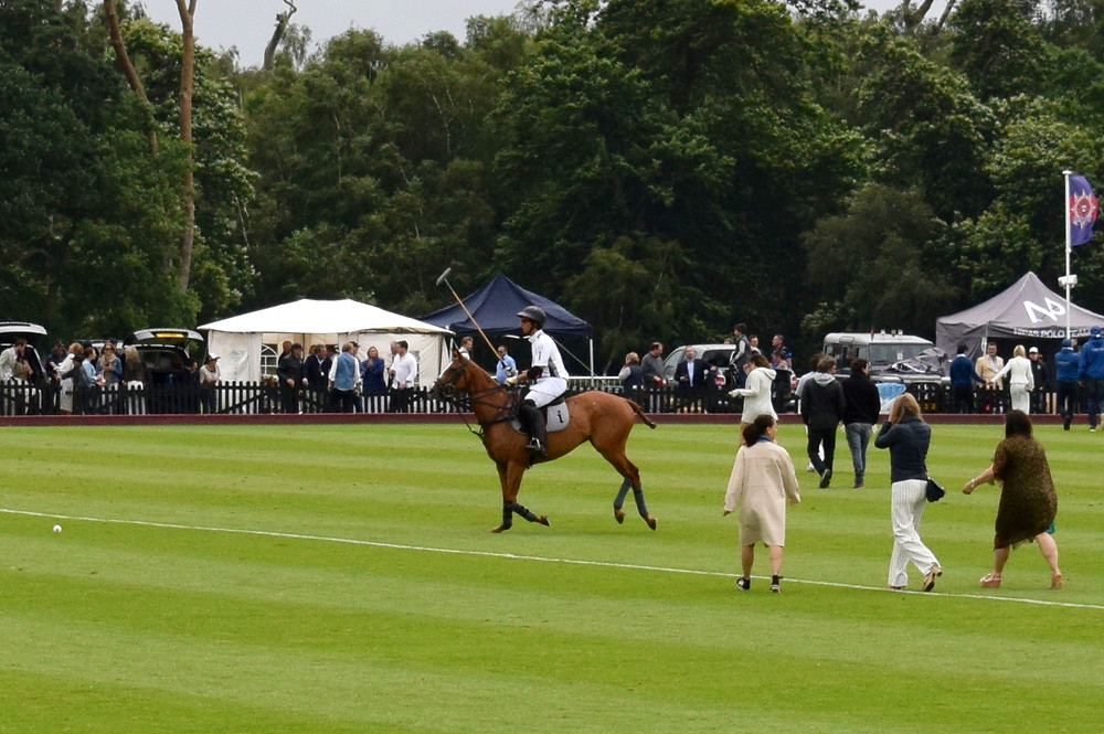 Polo players and the public shouldn't mix...