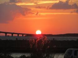 日の出とススキの穂