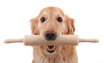 Baking-dog