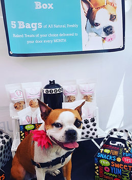 Monthly Barkery Box
