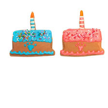 Birthday Cake Cookie with Candle