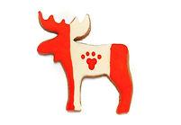 Canada Moose.jpg
