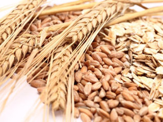 Whole Wheat Flour - Friend or Foe?