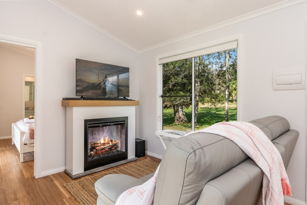 Electric Log-Look Fireplace and Smart TV