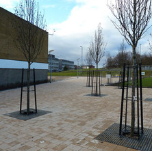Renovations of the South Side of the Clyde Shopping Centre are almost complete. - 26th January 2011