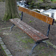 It wasn't thought through very well when this bench was positioned in the park. - 22nd March 2018