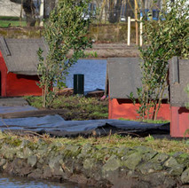 New bird houses on the island in the duck pond.  Dalmuir Park  - 5th February 2013