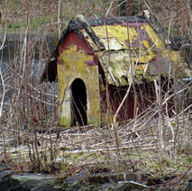 Bird houses on the duck pond island are a wee bit worse of ware. - 22nd March 2018