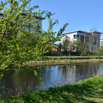 Modern housing on the canal at Dalmuir. - 18th April 2014