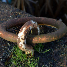 An old mooring ring on the Forth & Clyde Canal, used for mooring the old barges many years ago. - 26th January 2013